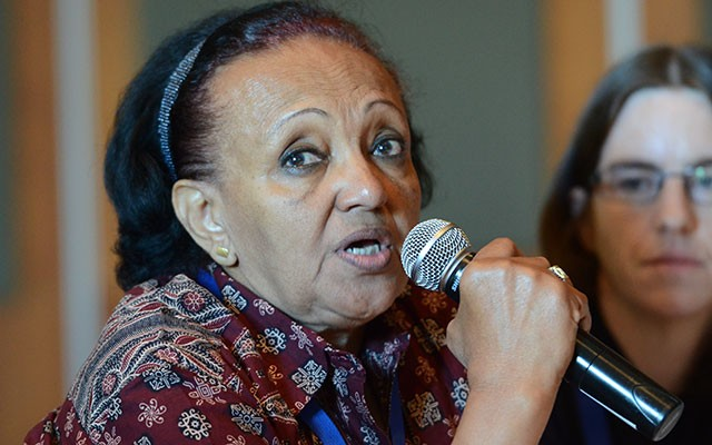 Suad Sulaiman of the Sudanese National Academy of Sciences at the INGSA workshop [Edward W. Lempinen/TWAS]